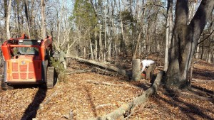 Land Clearing Service Front Royal VA