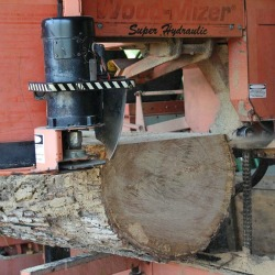 Tree Services and Sawmilling Service Virginia