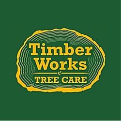 Virginia Tree Service and Tree Removal Company