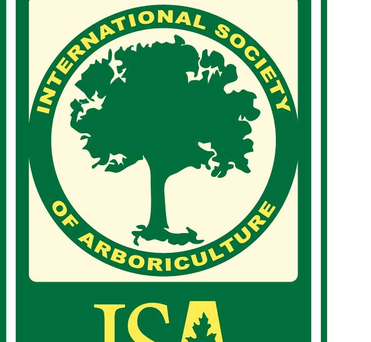 Timber Works Becomes ISA Member