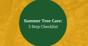 Summer Tree Care Tips