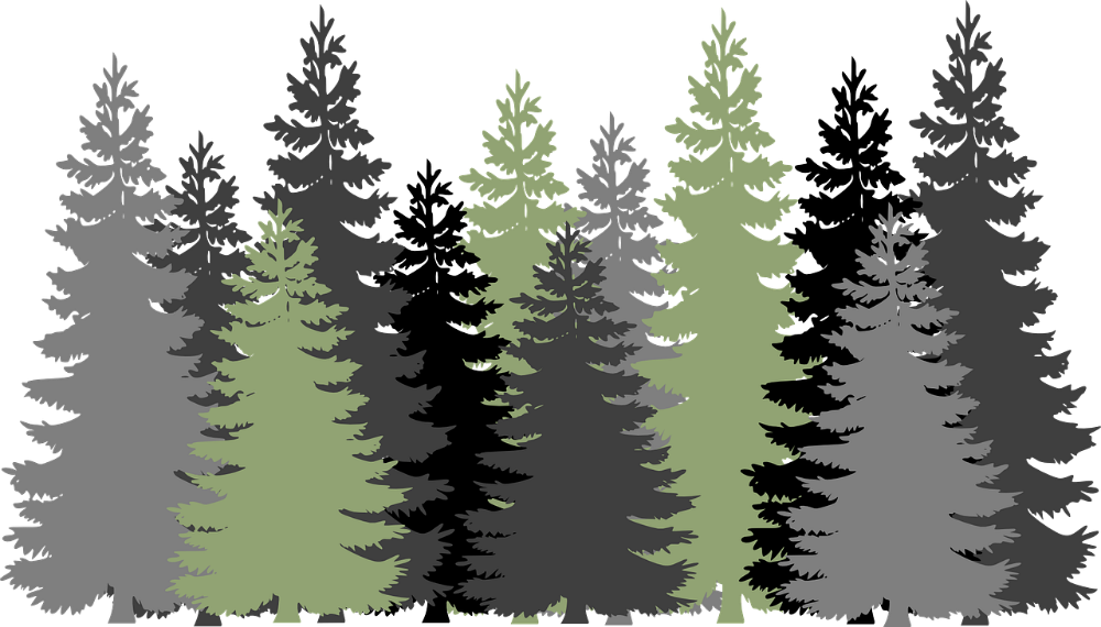 What Dimensions Do You Want Your Privacy Trees To Have-