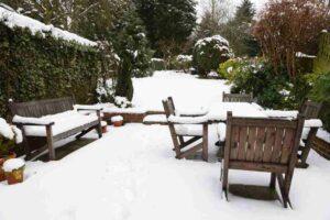 Winter Tree Service Checklist