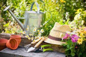 Spring Tree Service Checklist