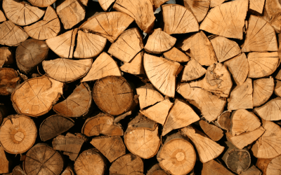 The Benefits of Splitting Green Wood