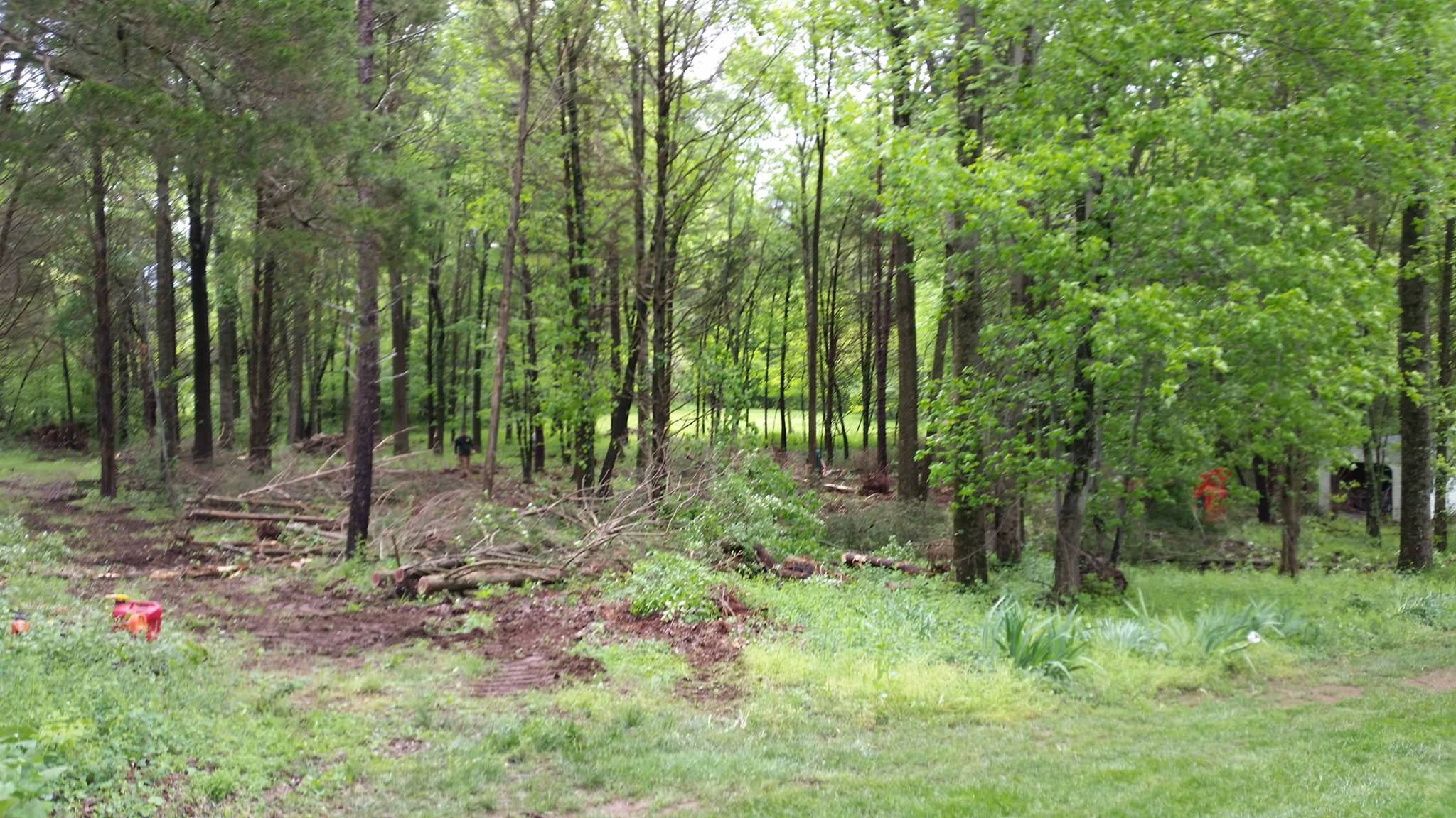 Northern Virginia Land Clearing Services