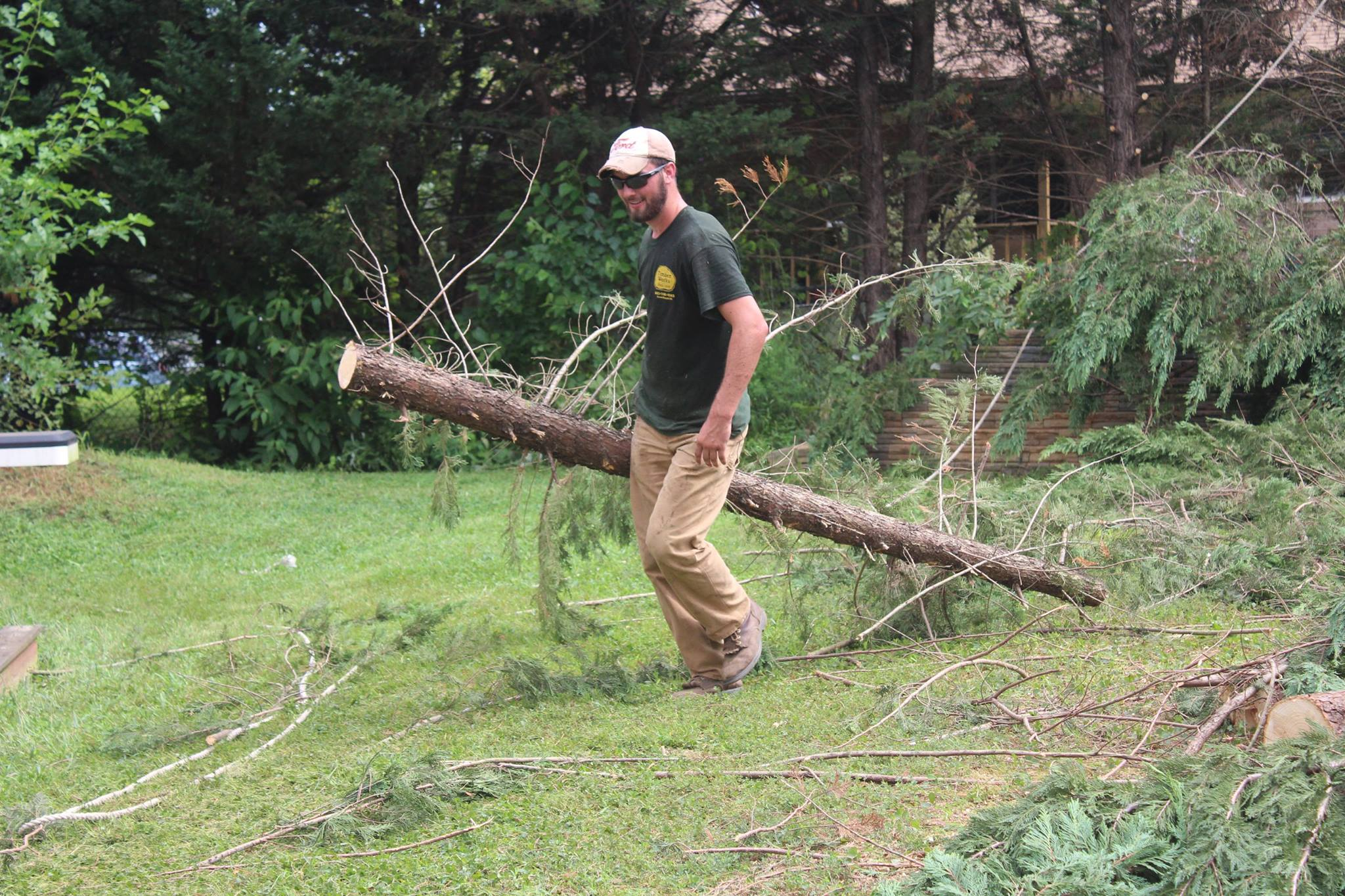 Warrenton Tree Service