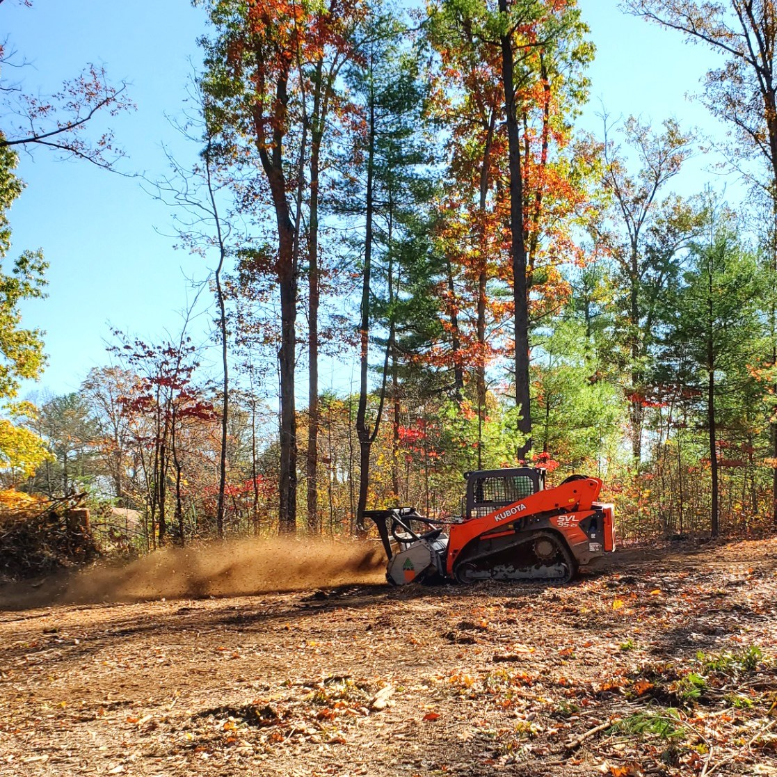 Tree Services and Stump Grinding Service Virginia