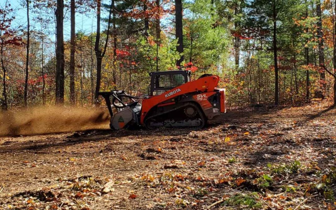 Benefits of Trail Creation with a Forestry Mulcher