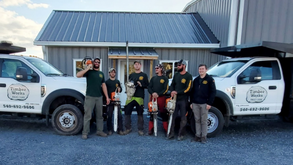 VA Tree Service and Tree Removal
