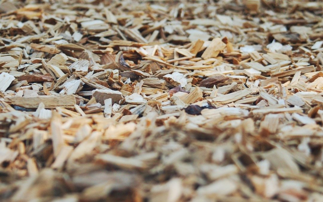 Benefits of Turning Invasive Species into Mulch