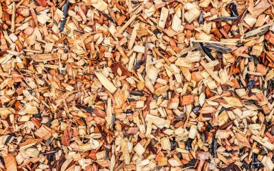 How Much Does Forestry Mulching Cost?